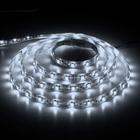 Лента LED LS604/LED-RL 60SMD(3528)/m 4.8W/m 12V 5m*8*0.22mm  белый на белом IP65 (блистер)
